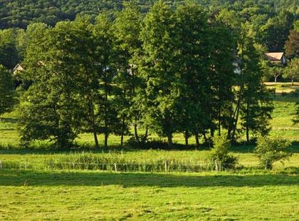 Parc naturel de chevreuse chevreuse id e de sortie for Sortie famille yvelines