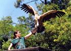 Sortie à Upie: Jardin aux oiseaux