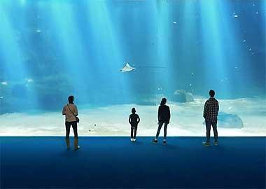 Sortie à Boulogne-sur-Mer: Nausicaá