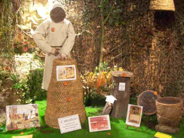 Sortie à Neuf berquin: Musée des Abeilles