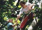 Sortie à Vivonne: Des racines à la cîme