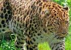 Sortie à Les sables d olonnes: Zoo des Sables