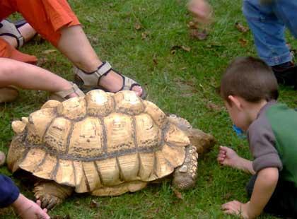 Sortie à La bastide de serou: La Ferme des Reptiles