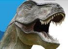 Sortie à MEZE: Musée des Dinosaures
